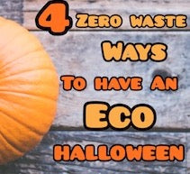 4 Zero Waste Ways to have an Eco-Friendly Halloween