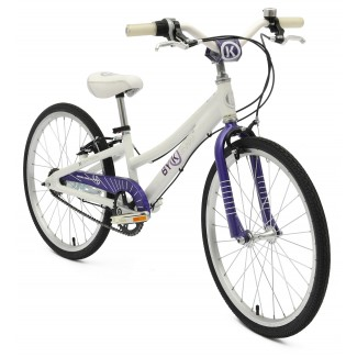 ByK E-450x3i Internal Geared Kids Bike Deep Violet  (Purple)