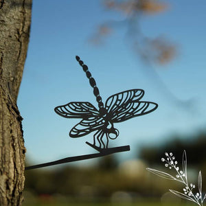 Animalia Art - Dragonfly