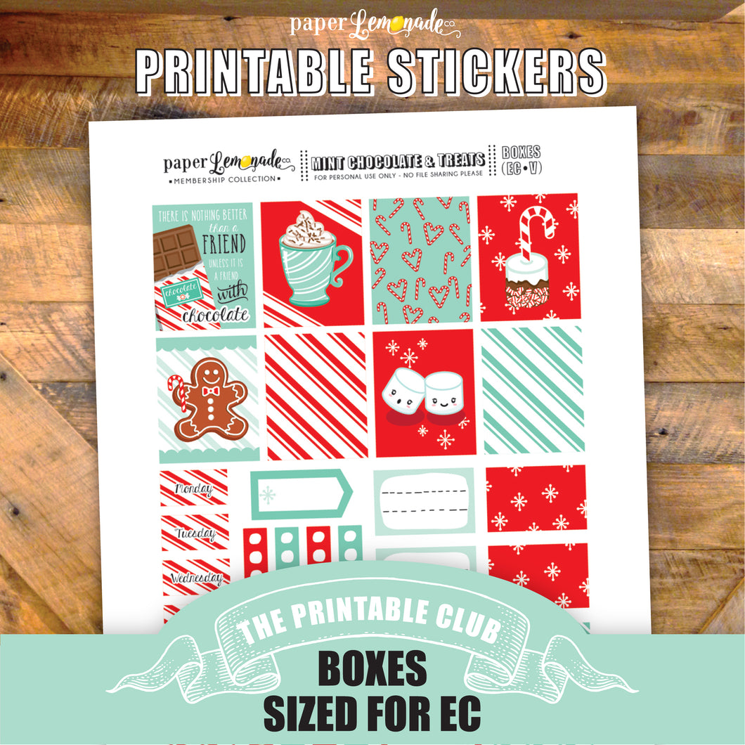 Mint and Chocolate Printable Stickers - Box Sheet sized for EC Vertical