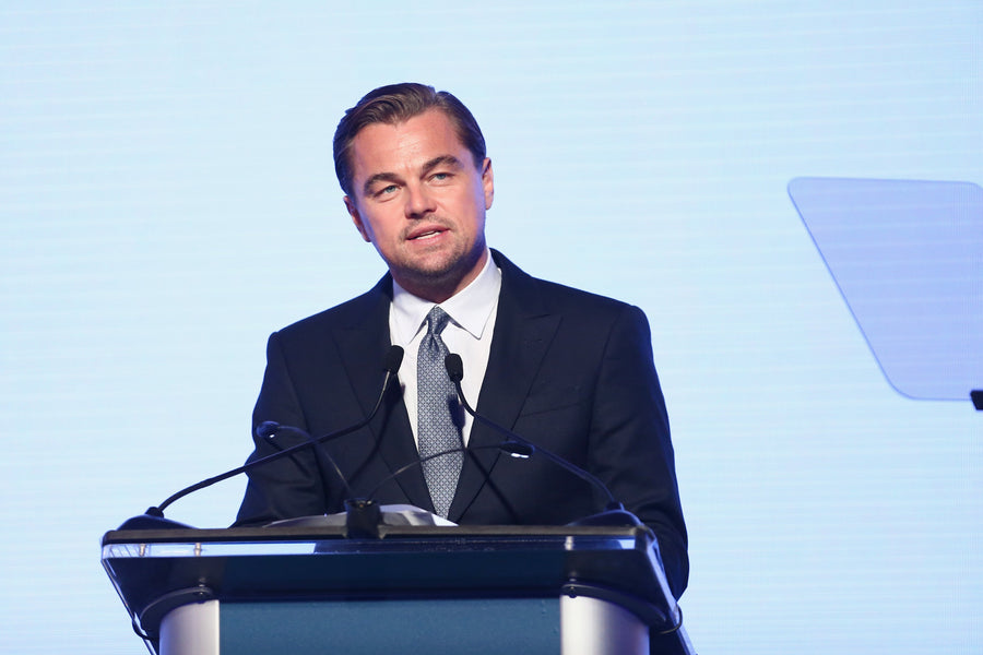 The Leonardo DiCaprio Fundation