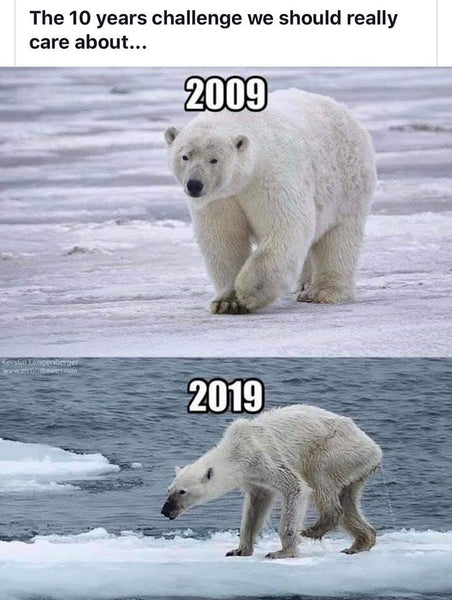 The 10 year challange we really should care about