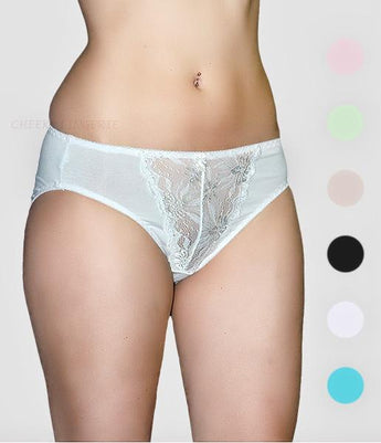 Lace Embroidered Microfiber Hi-Cut Brief