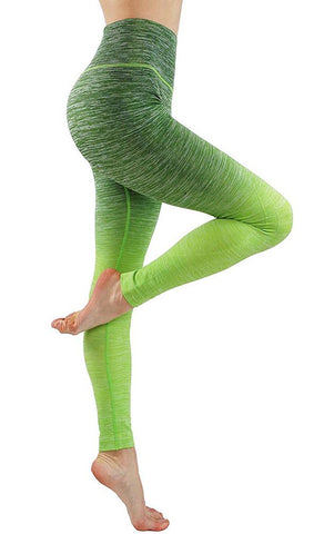Women's Flexible Ombre Workout Pants Kale Green