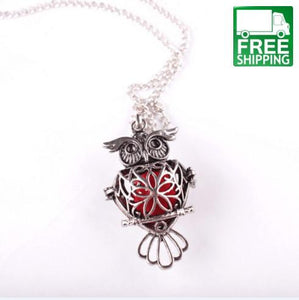 Aromatherapy Owl Silver Hollow Necklace