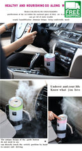 Humidifier For The Car
