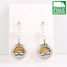 Aromatherapy Diffuser Drop Earrings