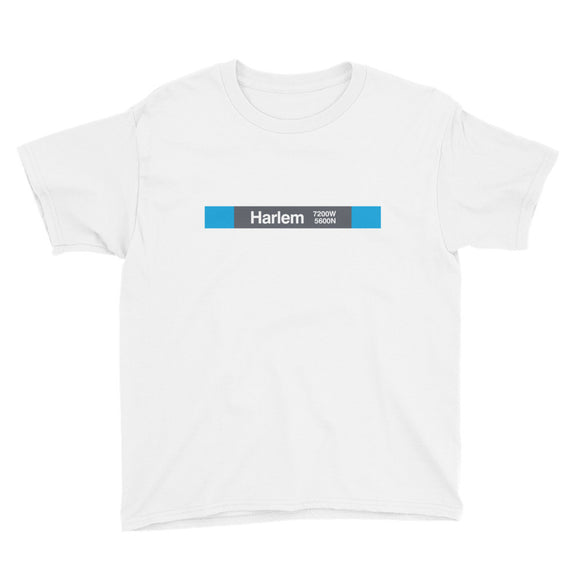 Harlem (Blue 5600N 7200W) Youth T-Shirt - CTAGifts.com