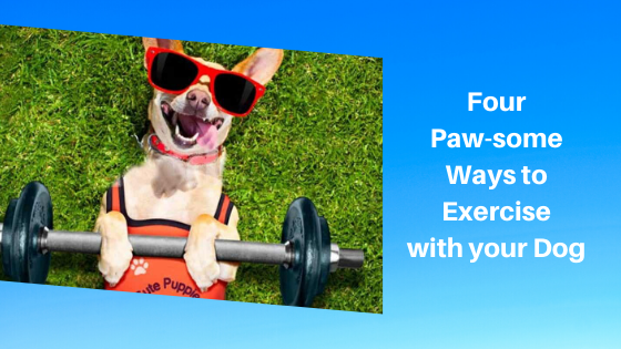 Four Paw-some Ways to Exercise with your Dog