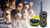 Dog training Collar with Anti Barking, Remote, Rechargable