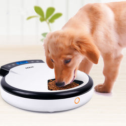 Automatic Dog Feeder - Free shipping + 1 year warranty