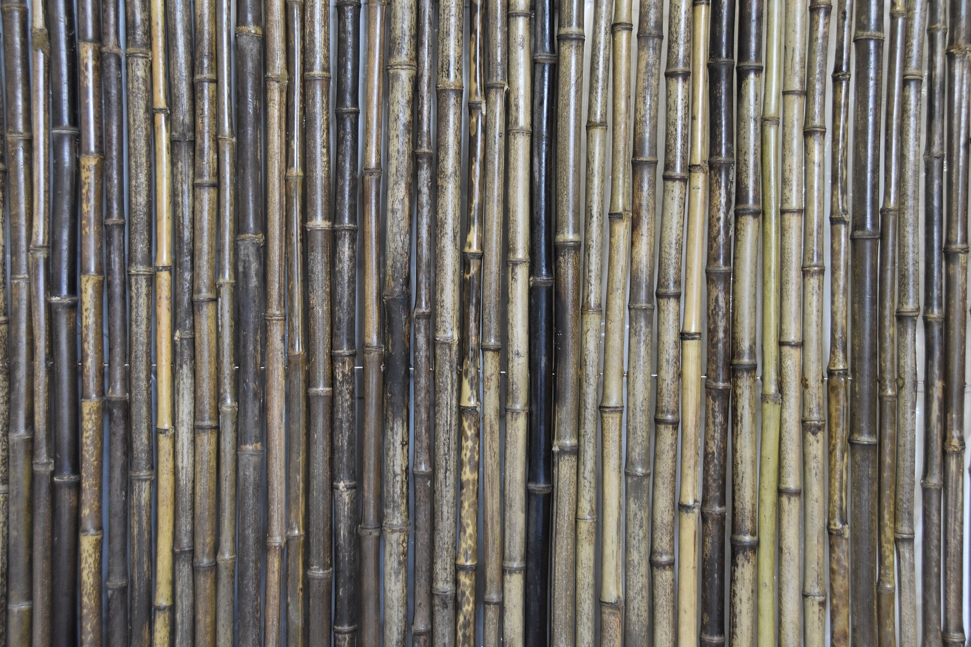 Dark Brown Bamboo Fencing