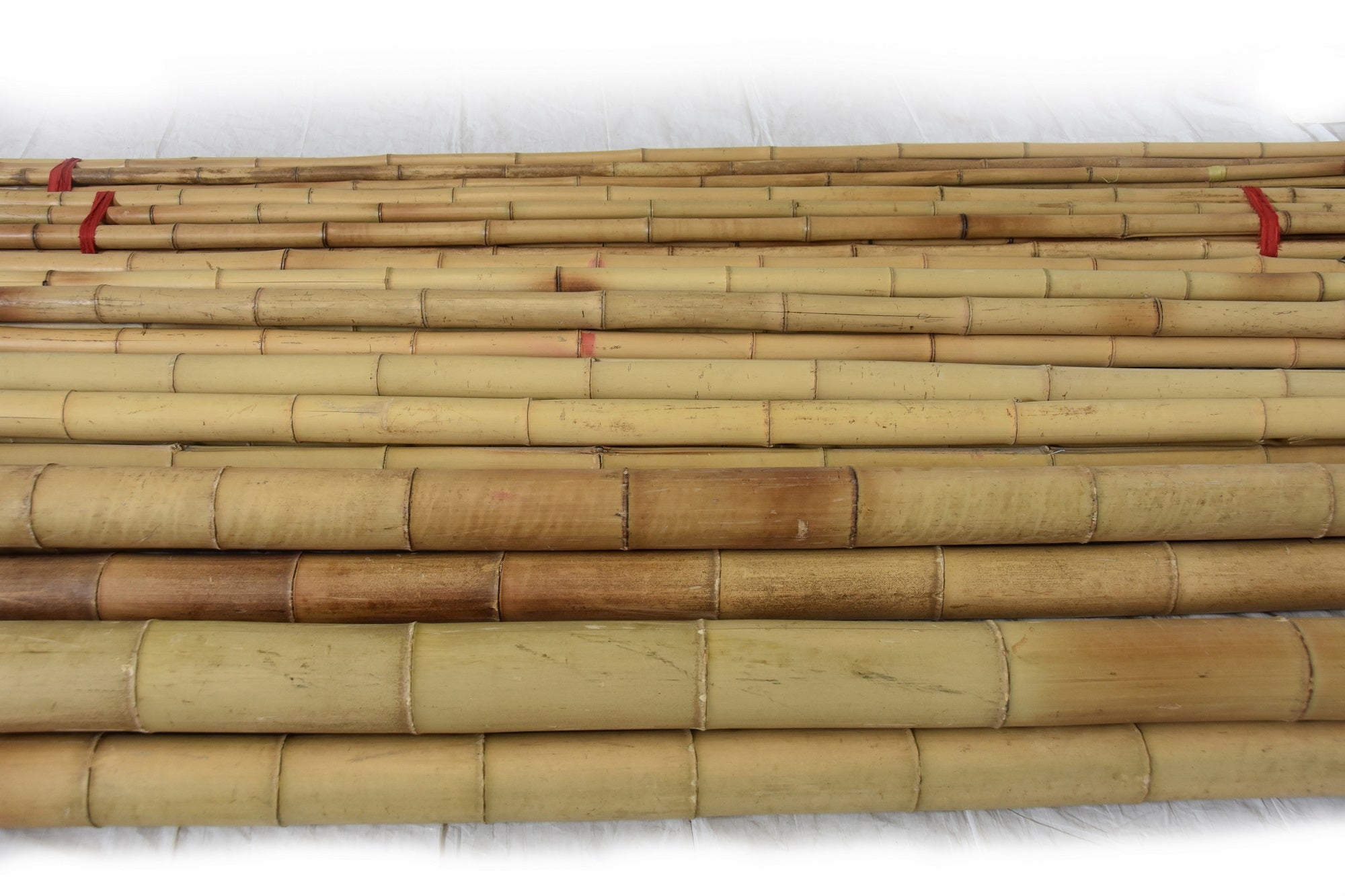 "Moso Bamboo Pole 2""D x 8' to 10'L"