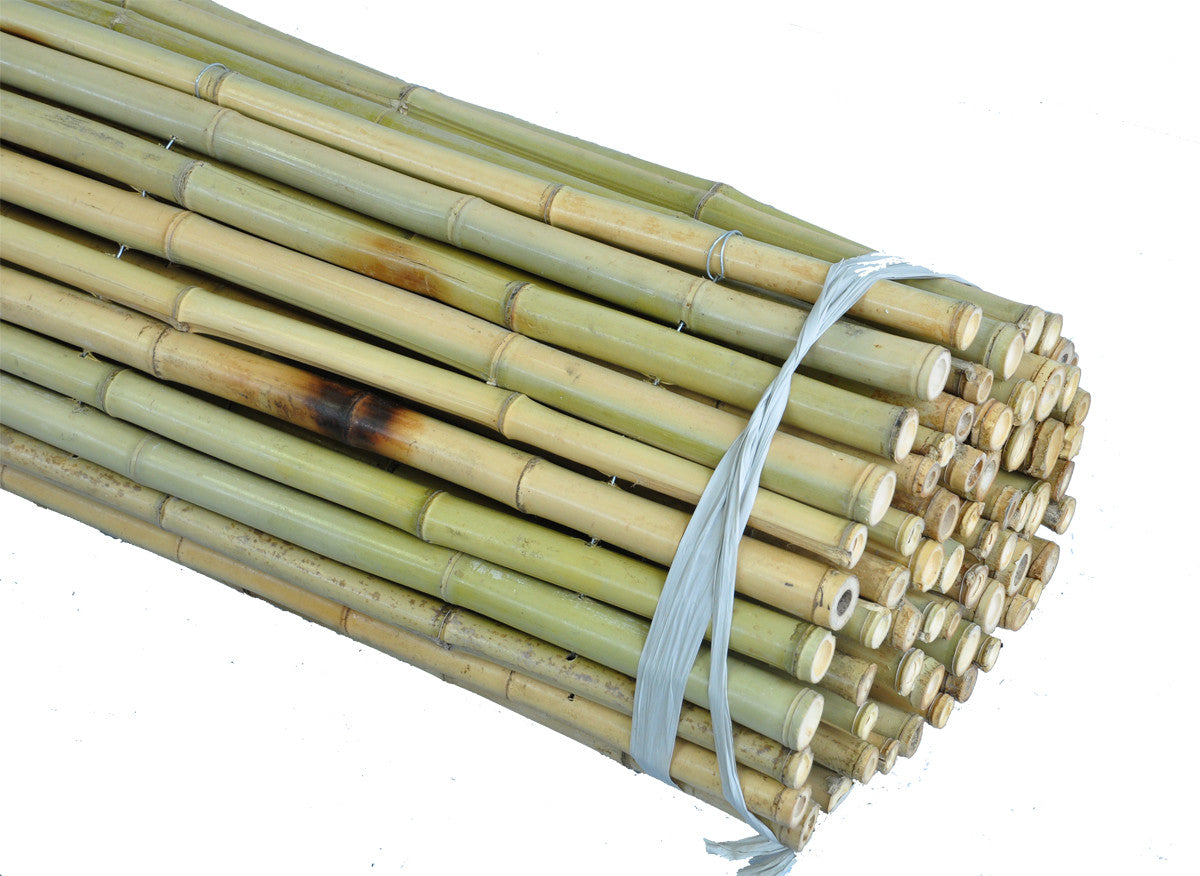 Natural Bamboo Fencing