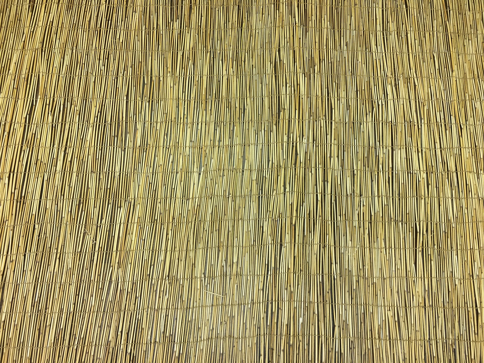 Reed Panel for Fencing and Sukkah Roof - Bamboo Toronto Store