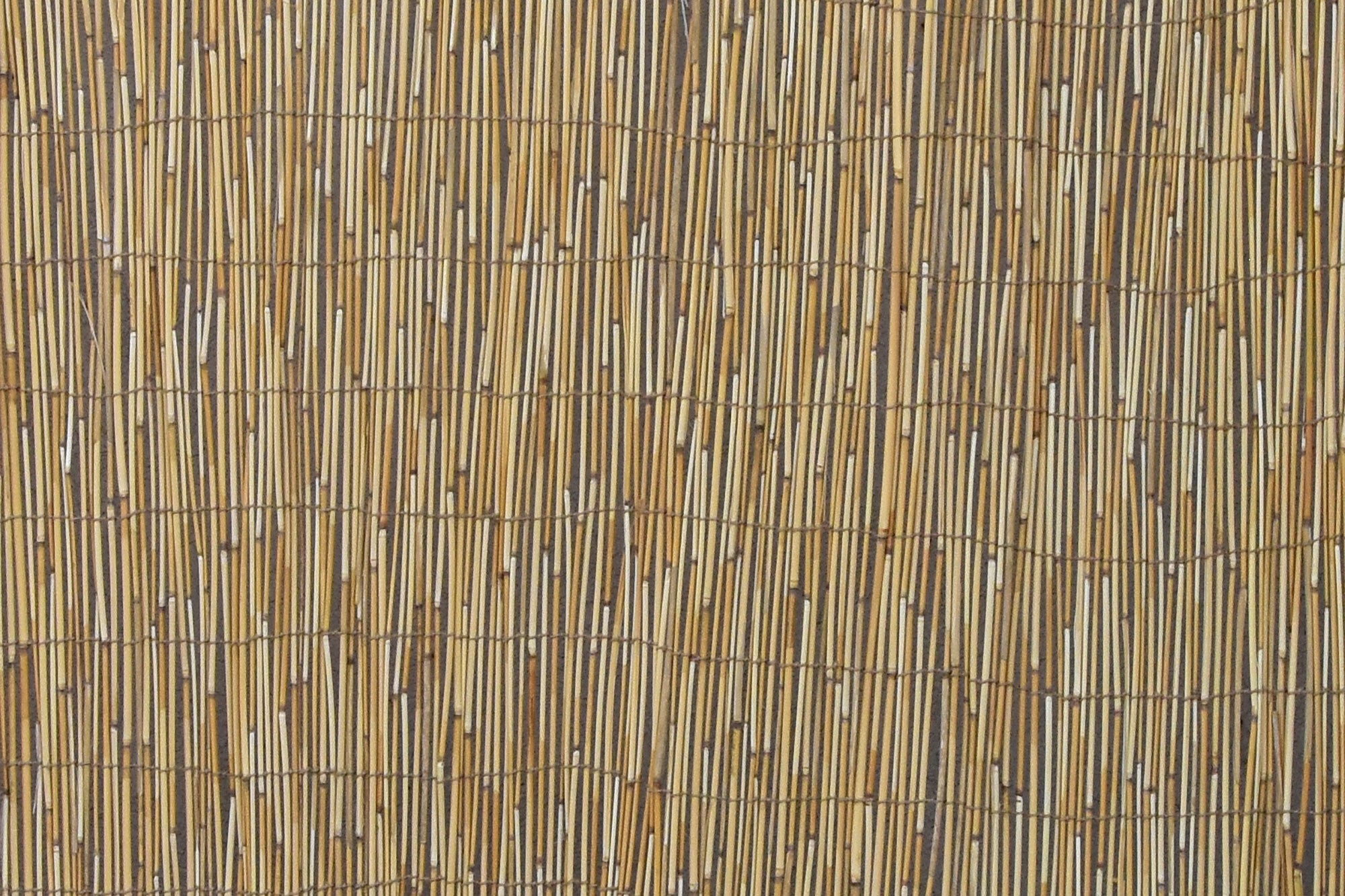 Reed Panel for Fencing and Sukkah Roof