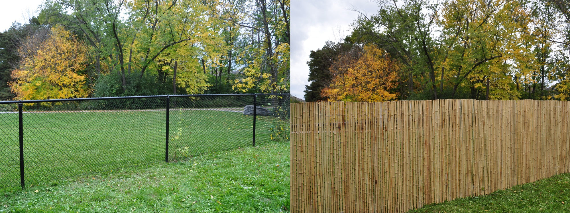 Picture of: Chain Link Fence Privacy Bamboo Toronto Store