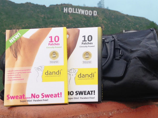 dandi goes to hollywood