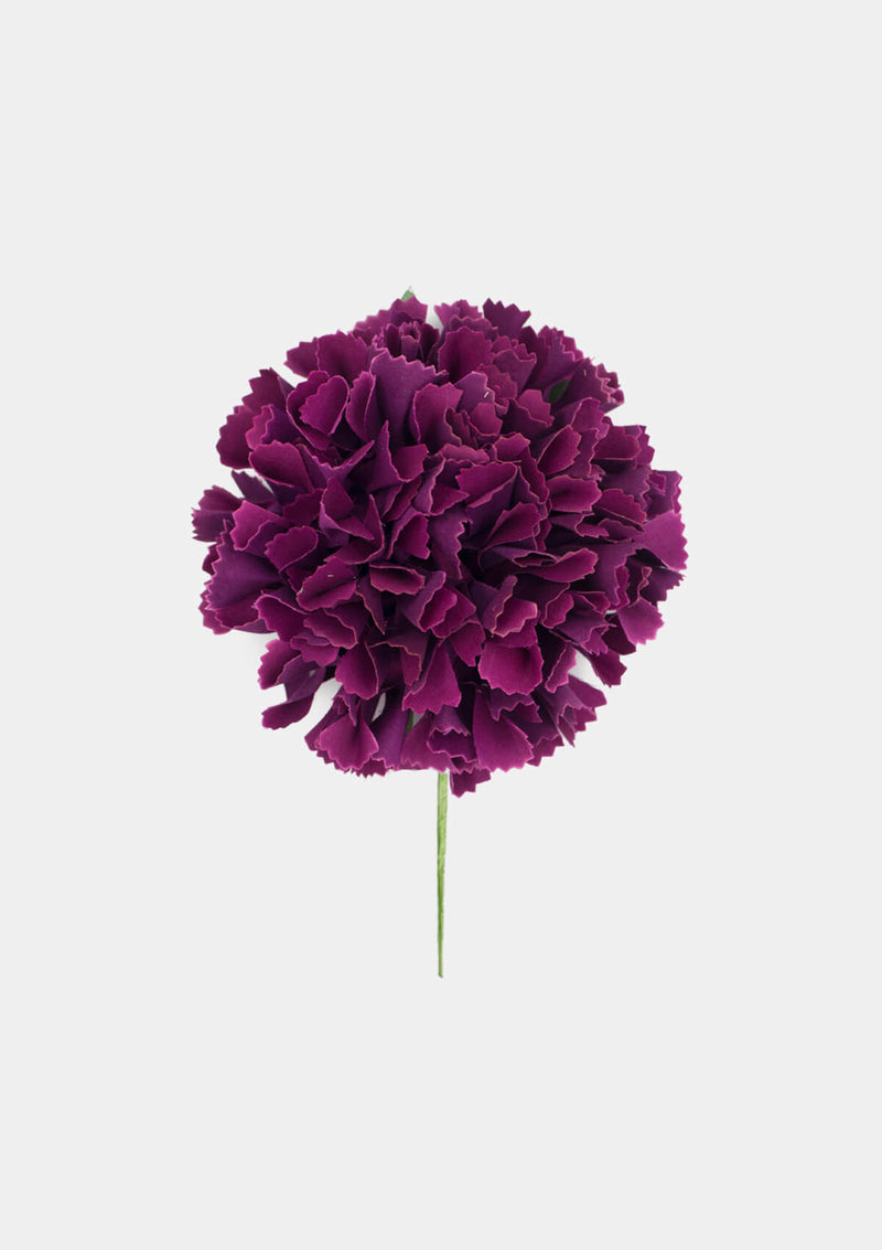 Flamenco Carnation purple