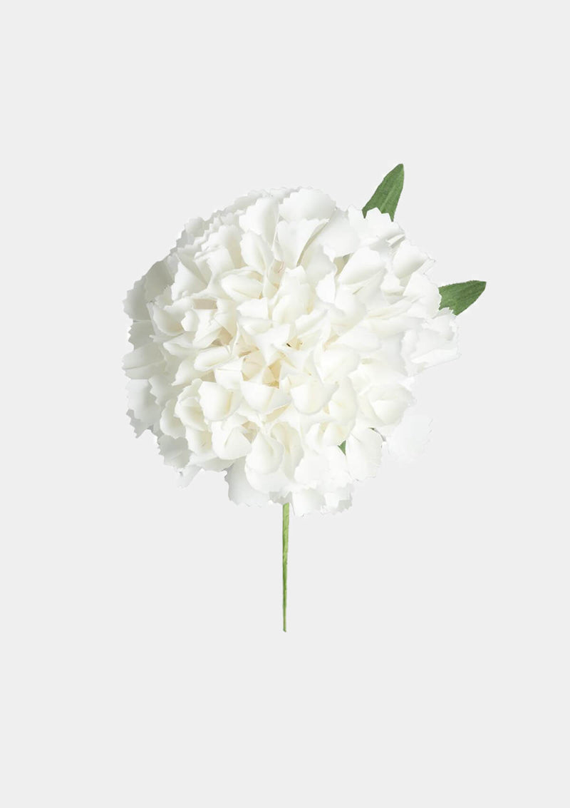 Flamenco Carnation White