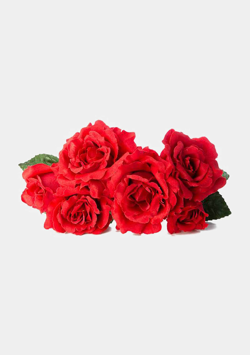 Flamenco six roses bouquet