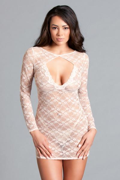 Blush Chemise Lingerie Lace Long Sleeve Sheer Open Back