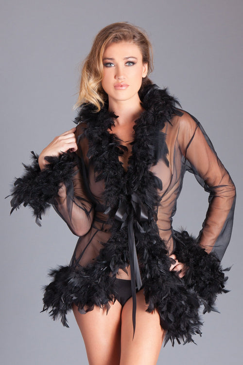 Black Sheer Feather Robe Sleepwear Lingerie
