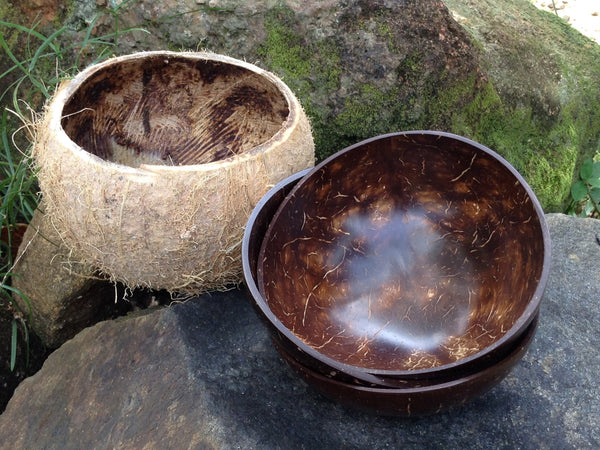 Coconut shell bowls - smooth exterior