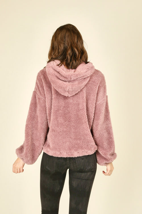 Cashmere Rose Bear Pullover Hoody