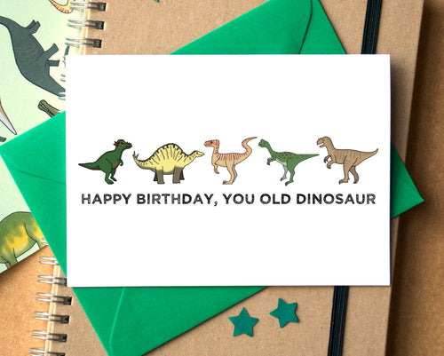 You Old Dinosaur Funny Birthday Card