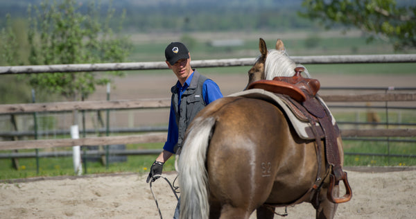 Mastery Horsemanship Welcomes you