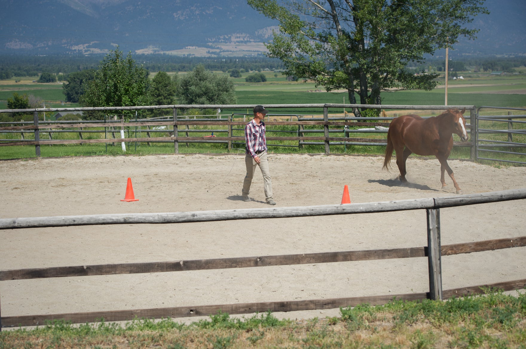 Round pens can ruin horses and here's why - by Don Jessop