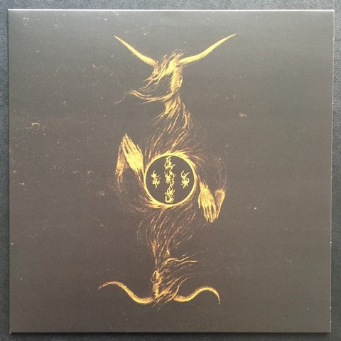 "Aevangelist ""Enthrall to the Void..."" LP"
