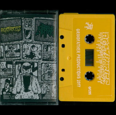 "Agathocles / Apoptosis ""Split"" MC"