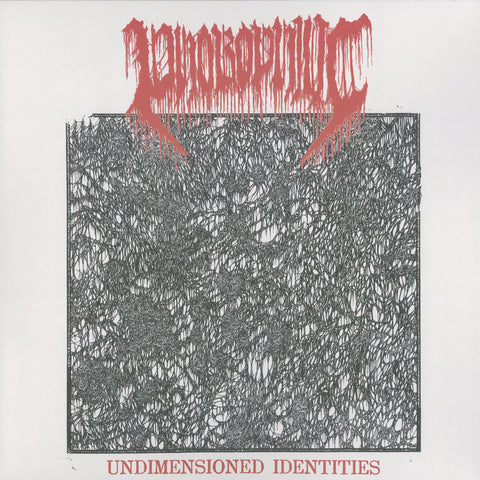 "Phobophilic ""Undimensioned Identities"" LP"