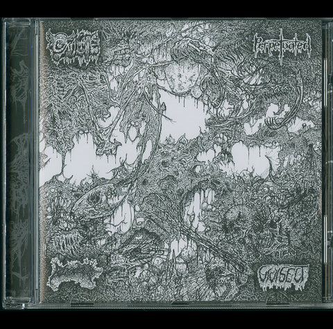 Oxalate / Perpetuated / Blood Spore / Vivisect Split CD