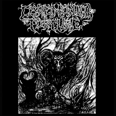 Ceremonial Torture / Reptile Womb Split 7""