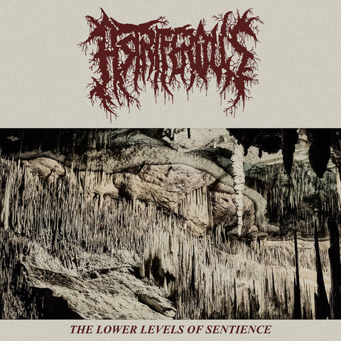 "Astriferous ""The Lower Levels Of Sentience"" LP"