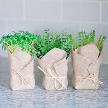 Faux Burlap Wrapped Herb Set | Home Decor | Amped Decor