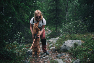 Tips for Backpacking with Dogs