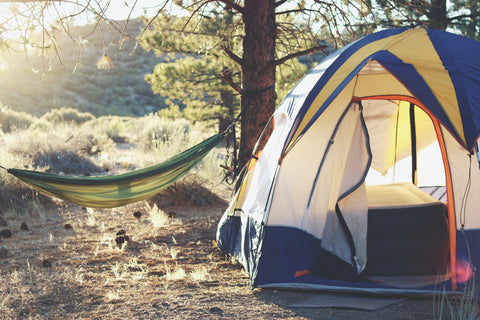 picture of a tent and a hammock in the woods