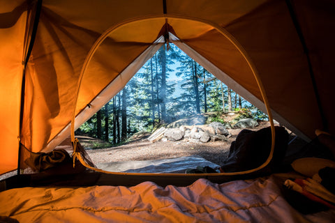 picture looking out of a tent at the woods