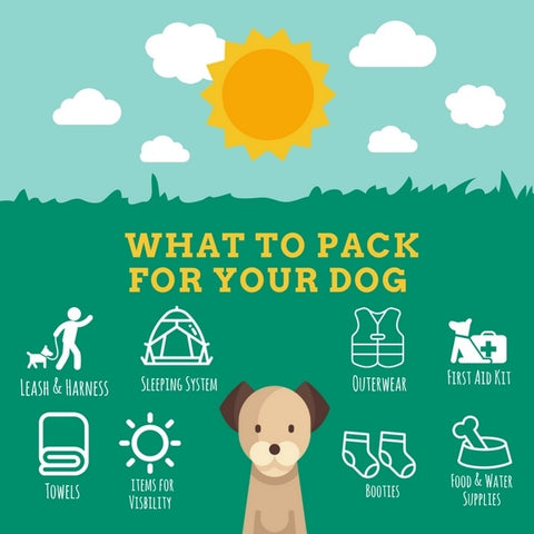 What to pack for your dog when hiking and camping