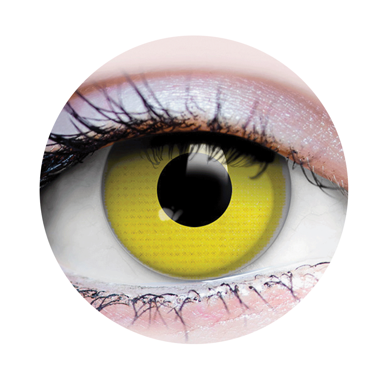 PRIMAL® Raven eye yellow Halloween Costume Contact Lenses-close up
