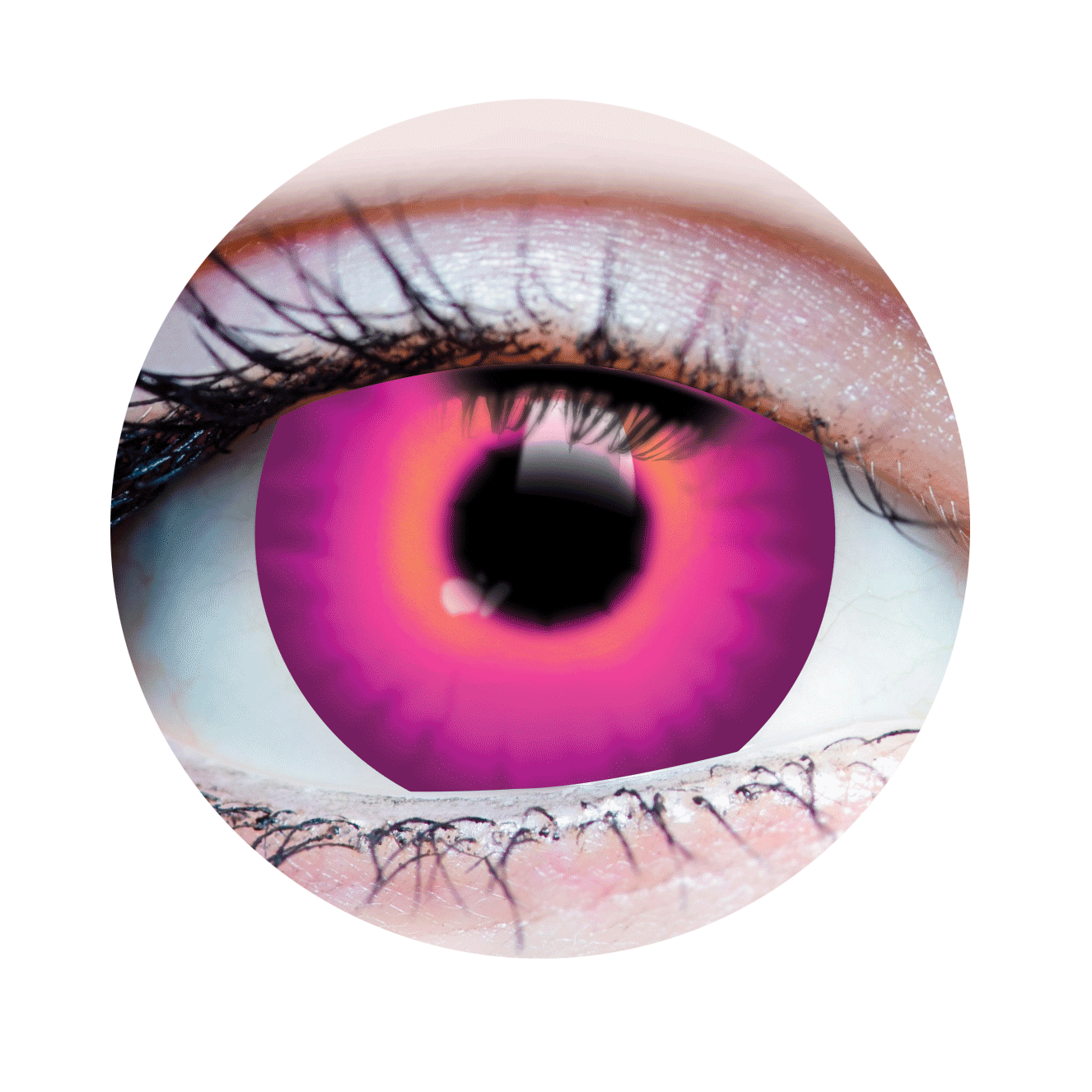 PRIMAL® JINX mini sclera Halloween Costume Contact Lenses -close up