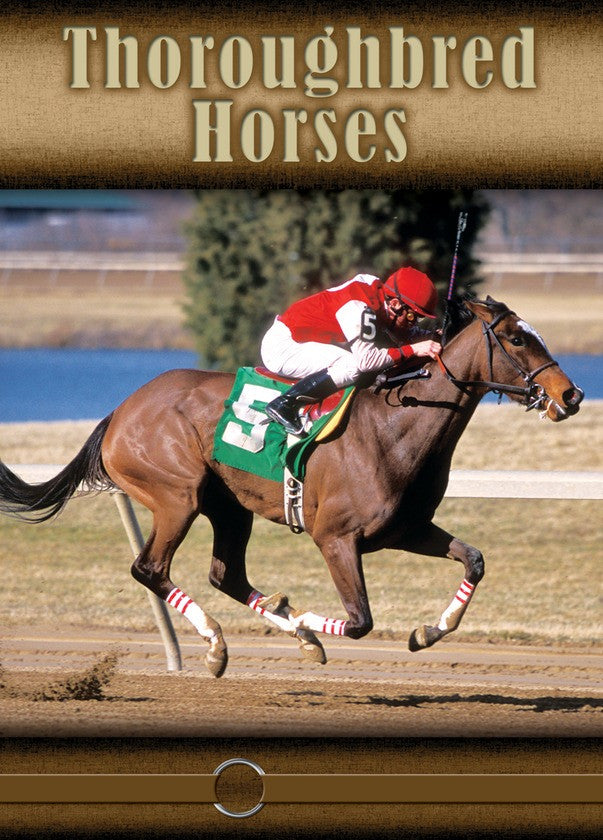2008 - Thoroughbred Horses (eBook)