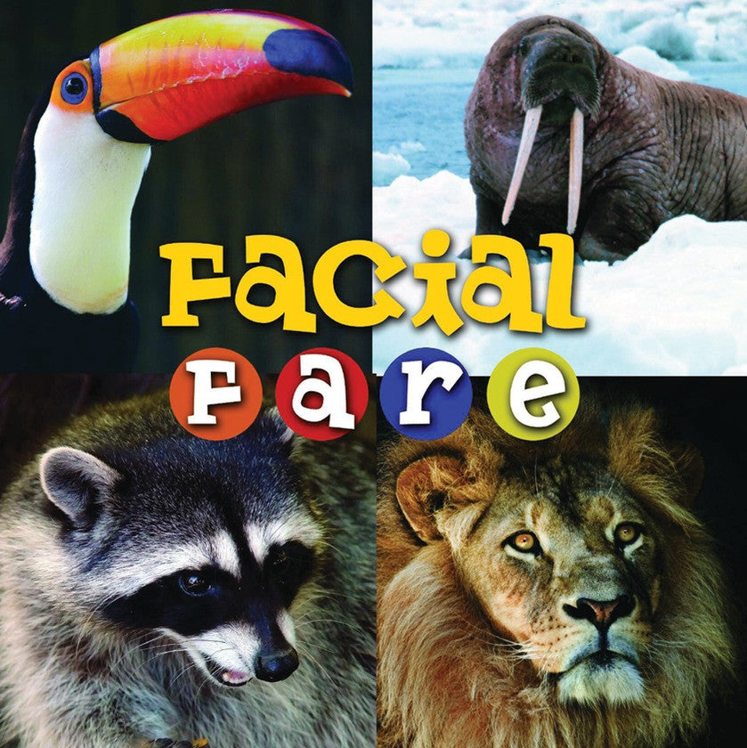 2009 - Facial Fare (eBook)