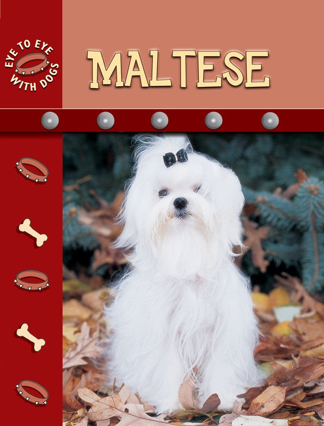 2009 - Maltese (eBook)