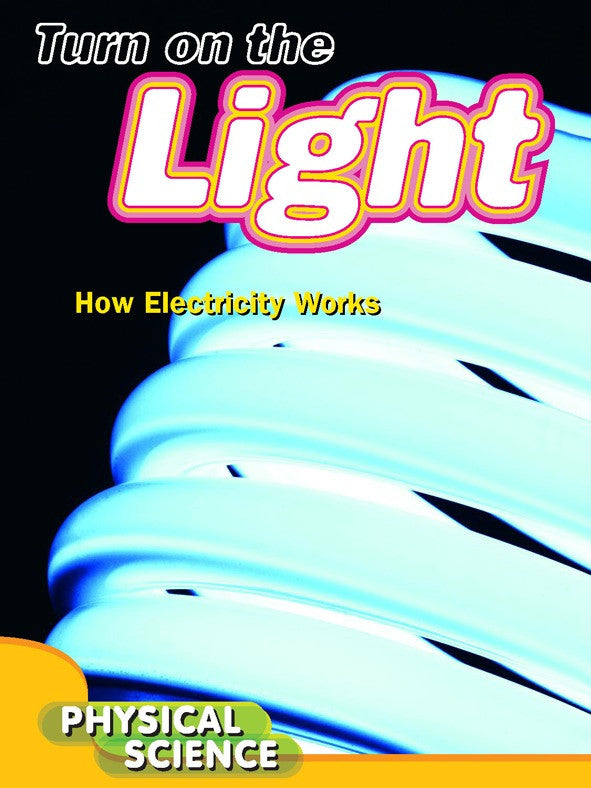 2011 - Turn On The Light (Paperback)