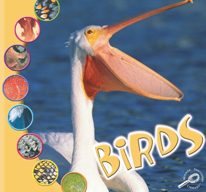 2006 - Birds (eBook)